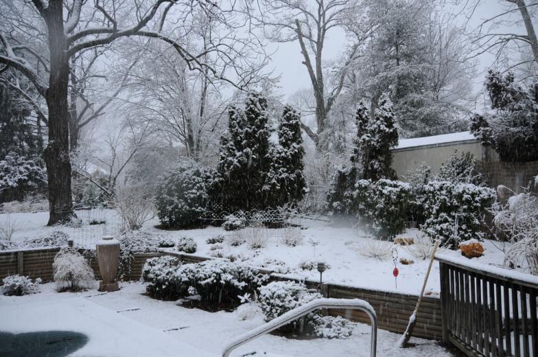 Pripravte svoju záhradu na zimu